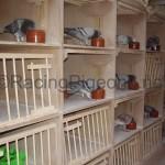 Система за пускане на едногодишни вдовци