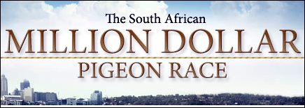 Гълъбодрум южна Африка - South African Million Dollar Pigeon Race