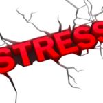 Реакция на спортните гълъби при стрес