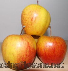 Ябълки за домашен ябълков оцет