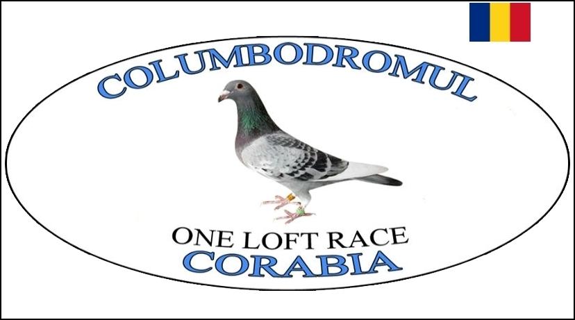 Гълъбодрум Корабия Румъния - Columbodromul Corabia - Corabia FCI One Loft Race